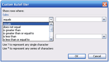 Autofilter Custom Option