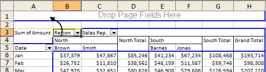 Add Page Field in Excel 2003 Advanced Pivot Table