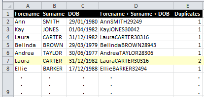 Result of Excel Duplicate Rows Example